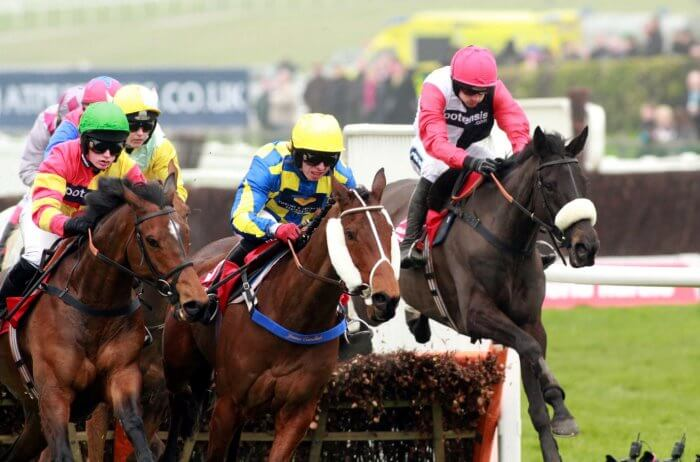 Big Buck's sits in behind the leaders, after the first circuit in the 2012 Stayers' Hurdle.