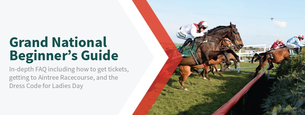 Grand National Beginner's Guide