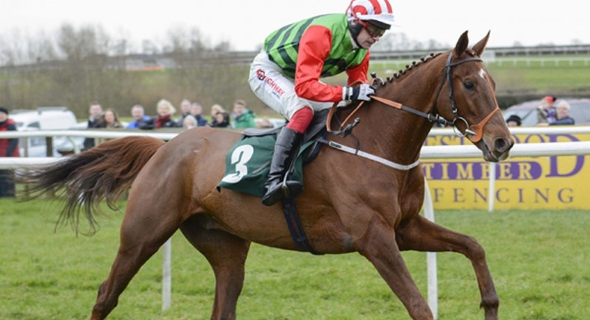 DEFINITLY RED (IRE) Grand National 2018