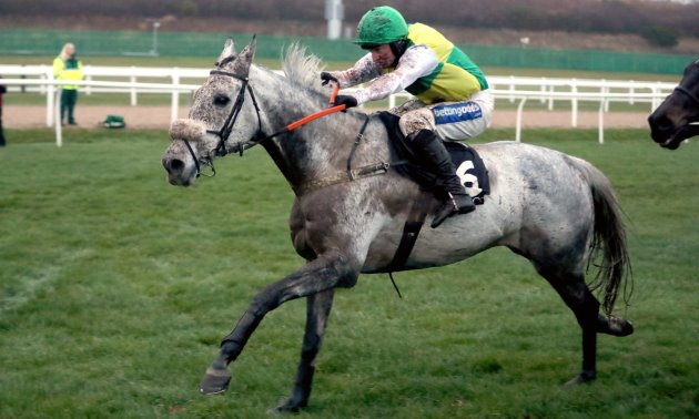 LAKE VIEW LAD (IRE) Grand National 2018