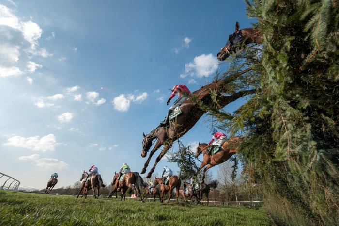 Free bets on the grand national sports betting systems bookshelf