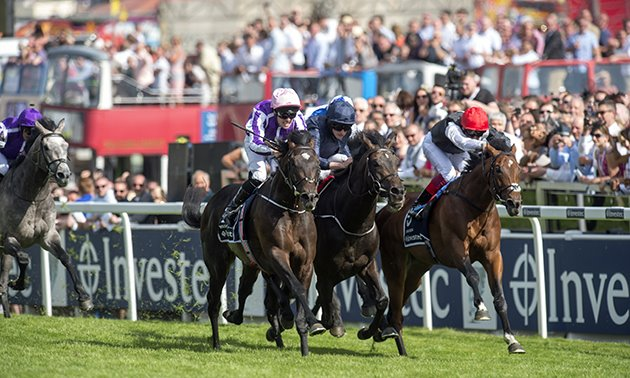 Epsom Ratings Update: Masar more than up to scratch