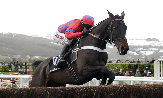 Timeform's Top Jumpers