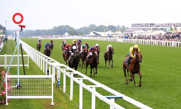 Saturday's Ascot, Haydock and Newmarket Horse Racing Tips and Free