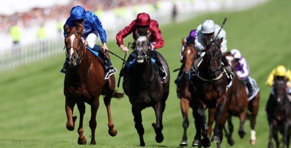 Paddy power irish derby betting sheet csgobetting youtube