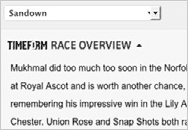 horse racing analysis