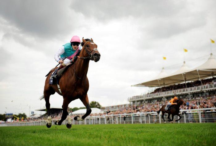 banker horse betting