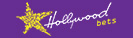 Hollywoodbets logo in a rectangular box.