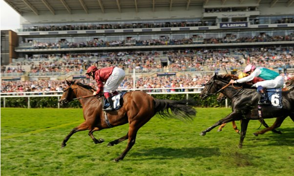 st leger betting preview goal