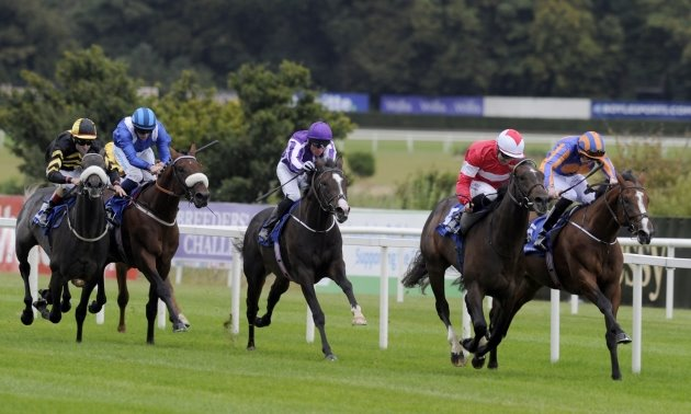 My Timeform: Timeform pick out three potential winners on the turf
