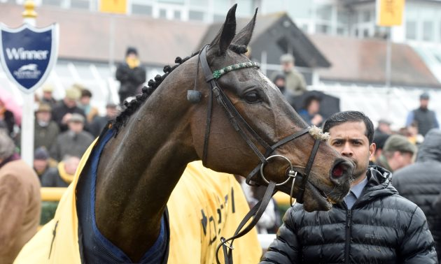 1965 Chase Preview: Altior can climb higher still