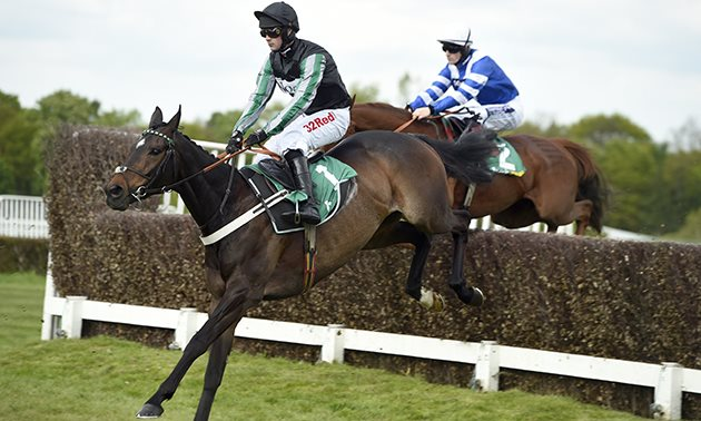 Altior and Cyrname: Best Performances