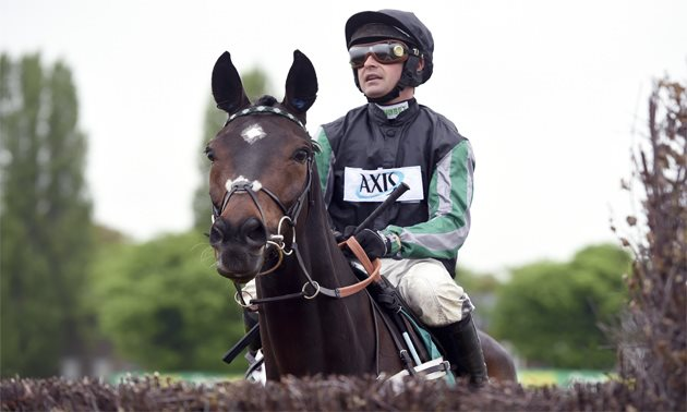 Altior in good shape ahead of Newbury outing