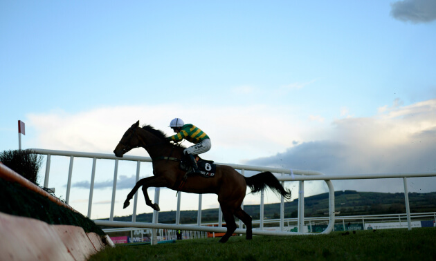 Five to Follow at Punchestown: Right said Ted