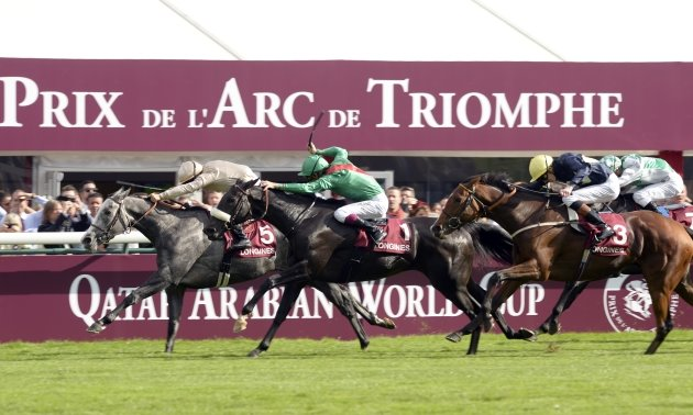 Timeform's Top European Flat horses