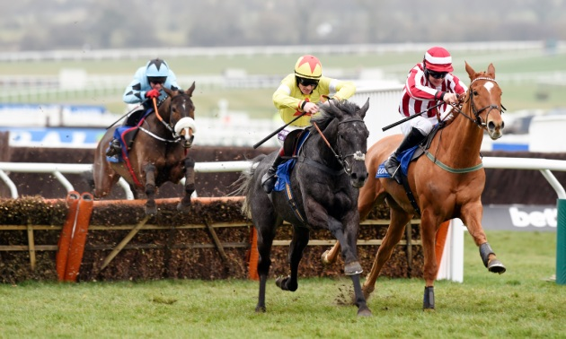 The Long Ranger: RSA Chase and Stayers' Hurdle