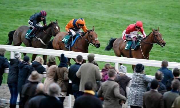 Timeform Novices' Handicap Chase Preview: Mister bombastic