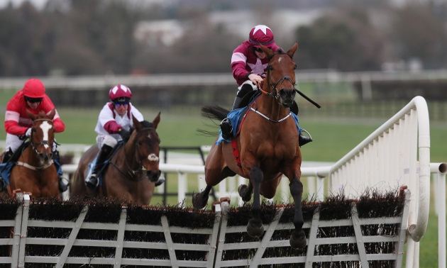 Punchestown Preview:  Exciting Battleoverdoyen can stamp his authority