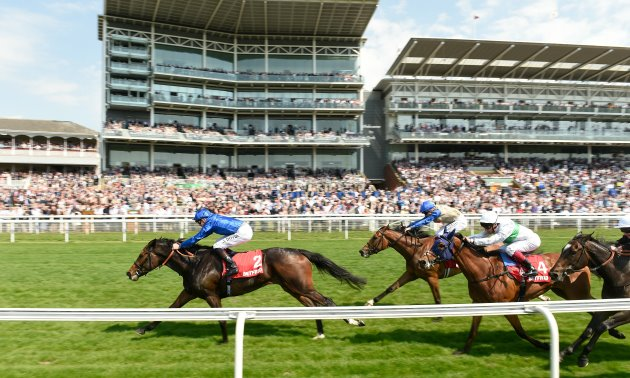 Ratings Update: Dante Festival and Lockinge Stakes
