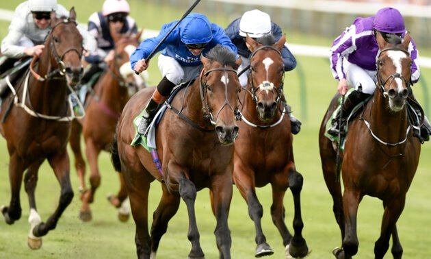 My Timeform Filter: Monday September 24