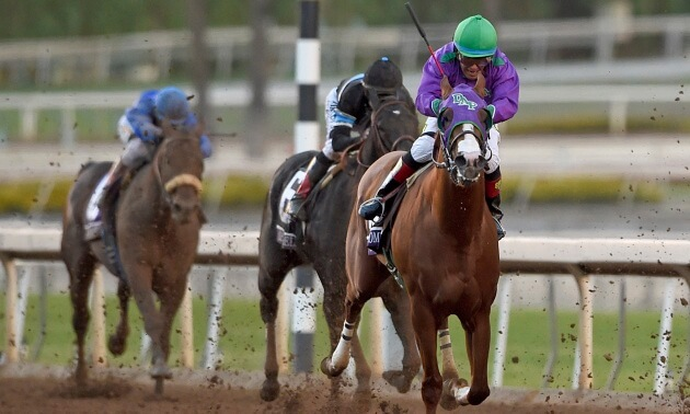 Jamie Lynch: Top 5 Breeders' Cup Moments