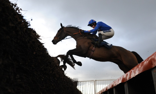 Scottish Grand National Preview: Another Success for King