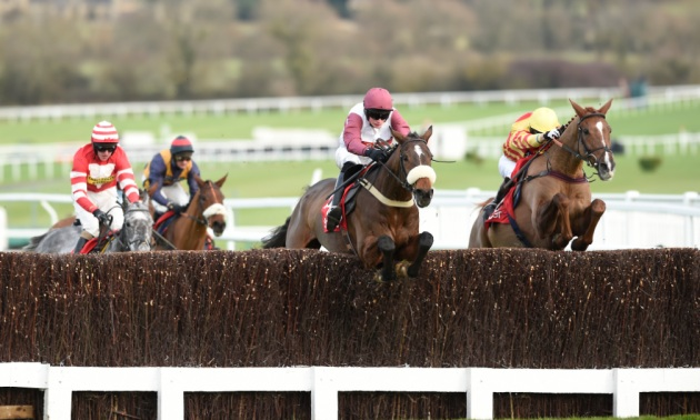 Cheltenham New Year's Day preview