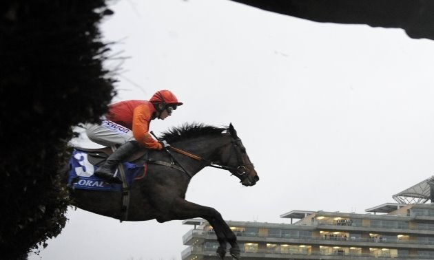 Rowleyfile Investigates: The remeasurement of jumps racecourses