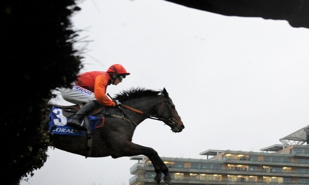 And they're NOT off - Friday racing abandoned at Cheltenham