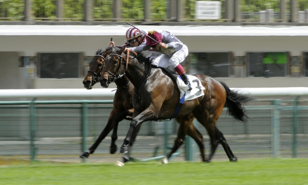Prix d'Ispahan Preview: Cirrus to prevail in fascinating clash