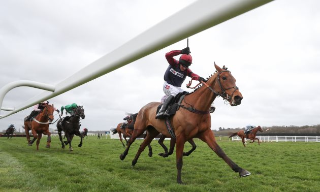 County Hurdle 2019 Free Betting Tips | Cheltenham Best Bets from