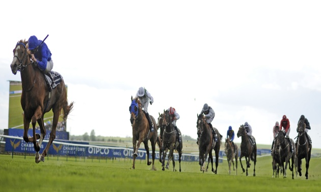 Godolphin: Three of their best buys