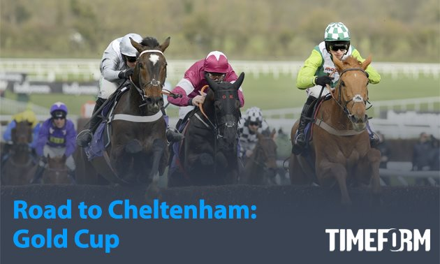 Road to Cheltenham news