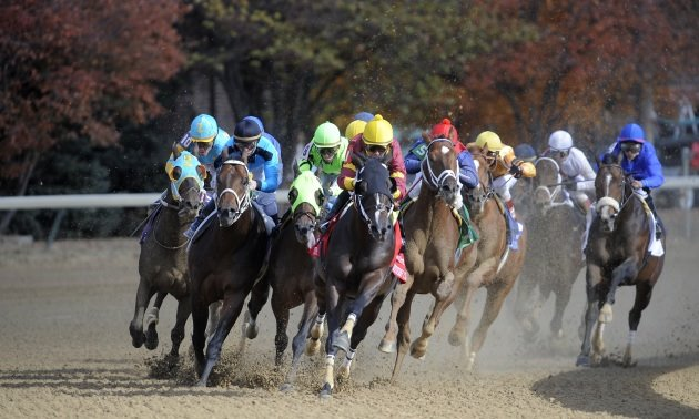 Preakness Stakes Preview: More to come from Churchill principals