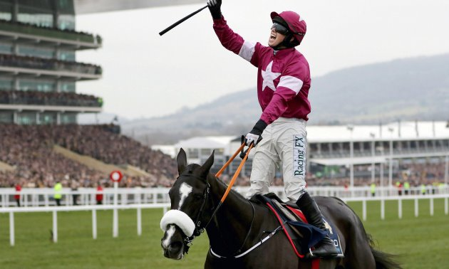 Don Cossack retired: The Timeform View