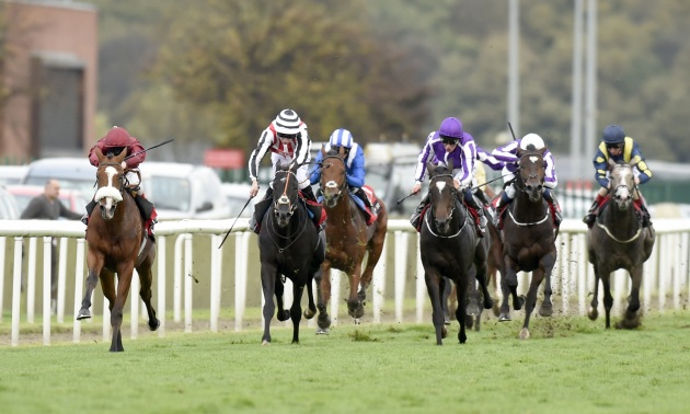 Dante Stakes: Elm Park the proven form choice