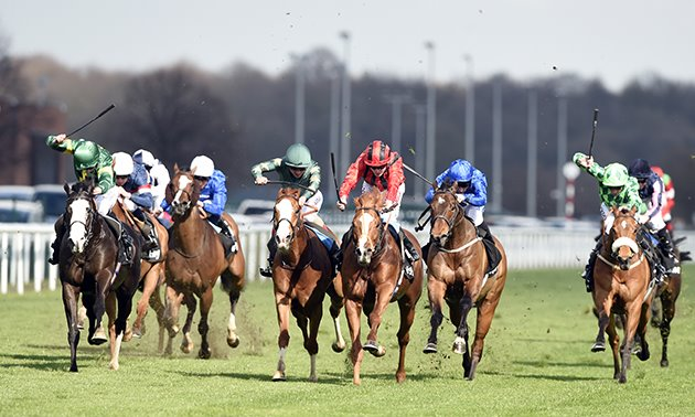 My Timeform: Eye-catchers from Chester, Newcastle and Newmarket