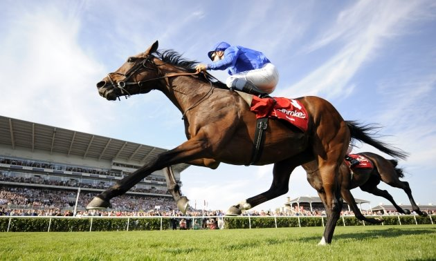 Timeform TV Focus: Saturday March 28