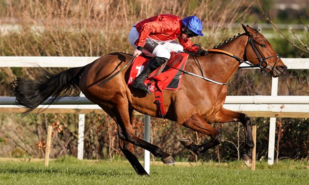 Stylish Envoi Allen still unbeaten after Grade One Naas win