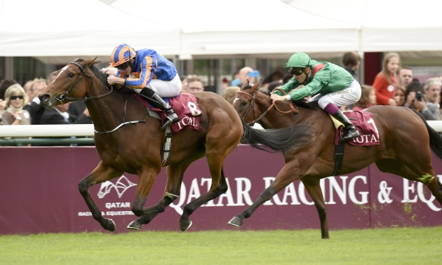 Prix Rothschild Preview: Ervedya can remain unbeaten this season