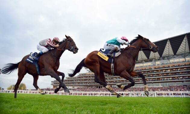 Champions Day: Five of the best