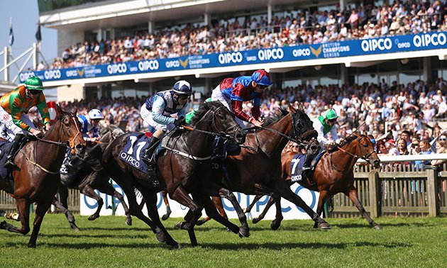 Timefigure review: Guineas Festival