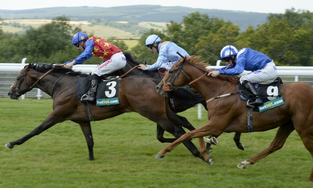 Timeform TV Focus: Saturday August 1
