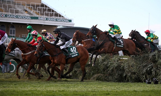 Where did my horse finish in the 2021 Grand National?