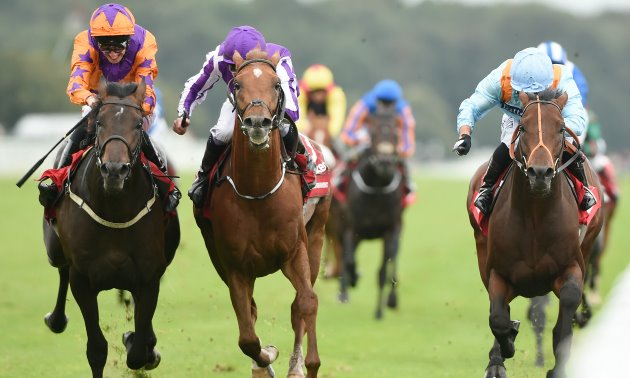 St Leger Preview: Ocean claims are Crystal clear