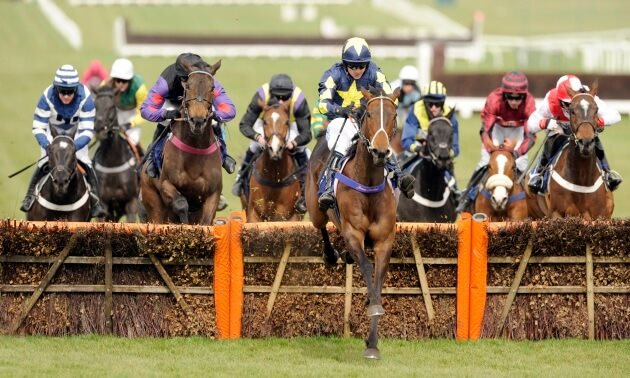 Be Wiser Insurance Juvenile Hurdle Preview: Groveman the value