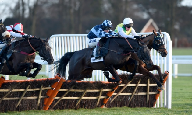 Rowleyfile Preview: Wessex Youth Trust Handicap Hurdle