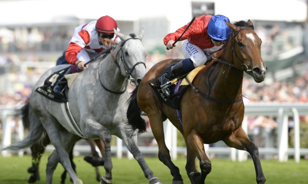Sectional Debrief: 2015 QIPCO Falmouth Stakes at Newmarket
