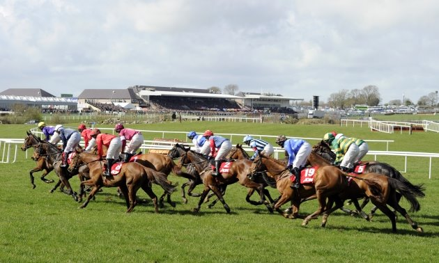 Punchestown Preview: Three bumper horses to note