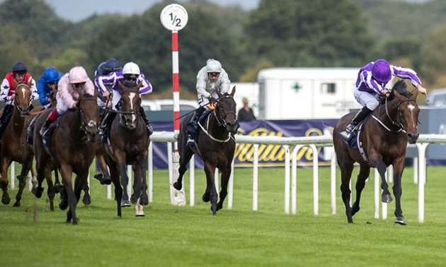 St Leger Festival Saturday: Doncaster Tips